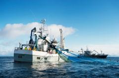 STCW - F Sikkerhetsopplæring for fiskere - Oppdatering